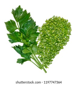 Fresh celery on white background. Celery sticks. Celery isolated. Celery stalk on white background. Food ingredients.
