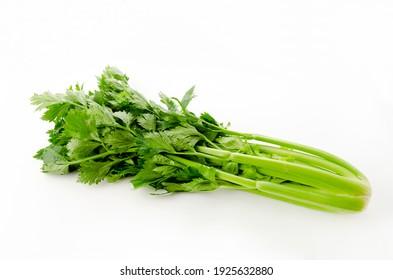 Fresh celery on a white background