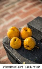 Fresh Chaenomeles from the garden - Shutterstock ID 1184376460