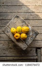 Fresh Chaenomeles from the garden - Shutterstock ID 1184376472