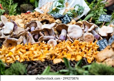 Fresh chanterelles and Cauliflower mushroom. Borough london, borough market london, farmers market, borough uk local market, farm market, farmers local market, dairy store, market gourmet, crates food