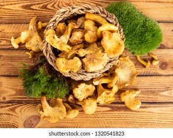 Fresh chanterelles or golden chanterelles over wooden background. Top View