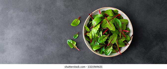 Fresh chard leaves on black background. Top view. Banner