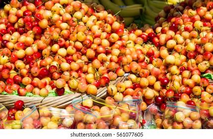 Fresh Cherries in Baskets and Bags.jpg