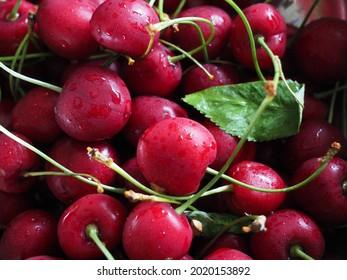 Fresh cherries closeup and a lead