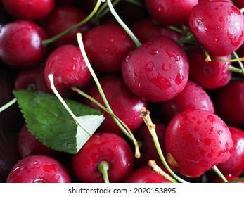 Fresh cherries closeup with a leaf