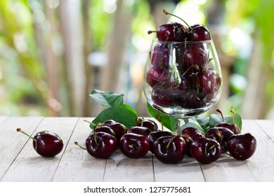 Fresh Cherries in glass and pile of cherries put on old wooden table in green garden / Blurred and Select focus and space for texts