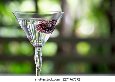 Fresh Cherry in glass with soda water on white floor table in green garden / Blurred and Select focus