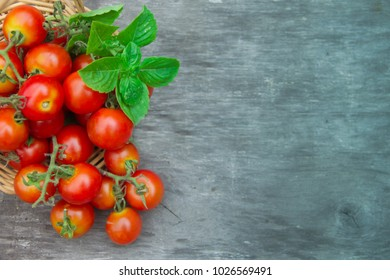fresh cherry tomatoes basil and oregano on aged wooden rustic background