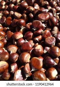 Fresh chestnuts in daylight