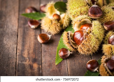Fresh chestnuts on the table