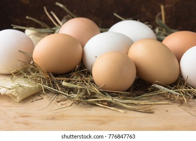 Fresh chicken eggs on the straw