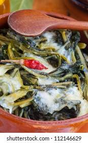 Fresh chicory and mozzarella cheese in a ceramic pot