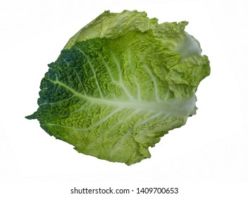 Fresh chinese cabbage isolated on a white background.