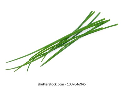 Fresh chives on a white background