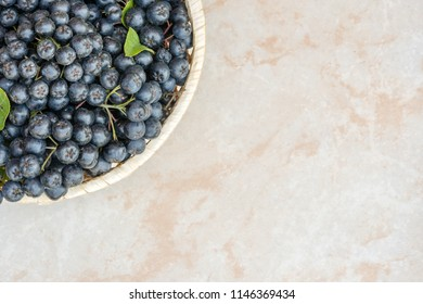 Fresh chokeberry background (Aronia melanocarpa) on ceramic with copy space for yours text.