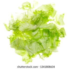 fresh chopped lettuce leaves