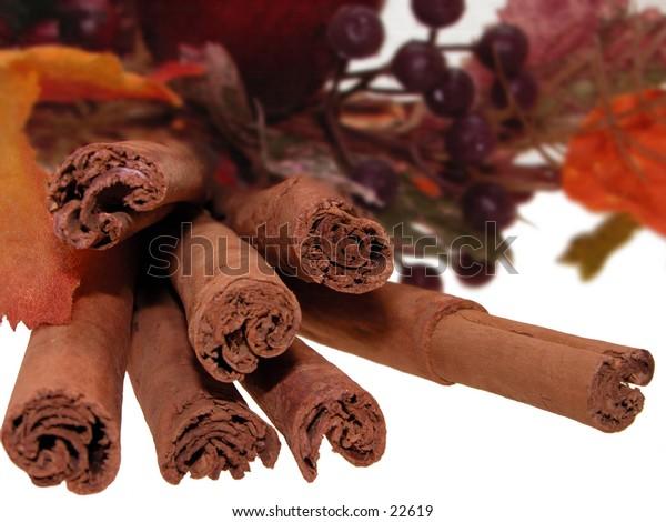 Fresh Cinnamon Sticks