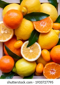 Fresh citrus fruits: lemons, oranges, mandarins with leaves, fruit background