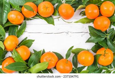 Fresh citrus fruits on white wood background.