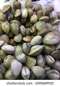 Fresh clams on ice at the market