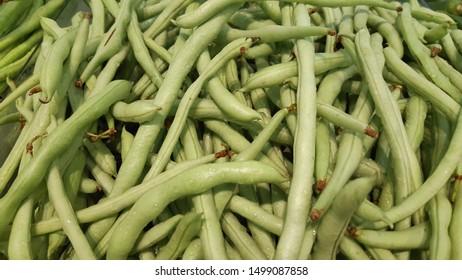 fresh clean small green bean