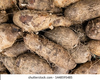 Fresh clean yam on the market. guinea yam
