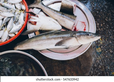 Fresh cobia fish at the market