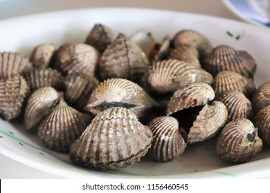 fresh cockle in the market at Thailand. brown cockles abstract background.seafood on ice. Tegillarca granosa, scallop, raw sea cockles for sale at seafood market use for cook steamed, blanched cockle