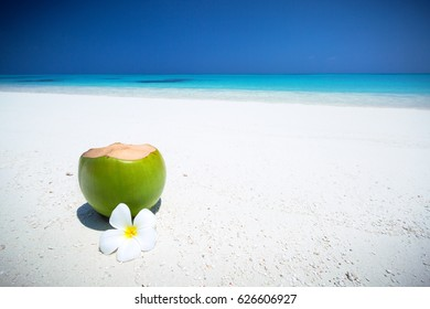 Fresh coconut juice decorated tropical plumeria flower on sandy beach with sea background, travel card with copy space.