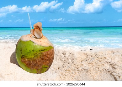 Fresh coconut on the beach with straw ready for drink. Tropical holidays. Travel concept.