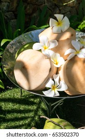 Fresh coconuts in a silver bowl with shadow of sunlight on green grass.