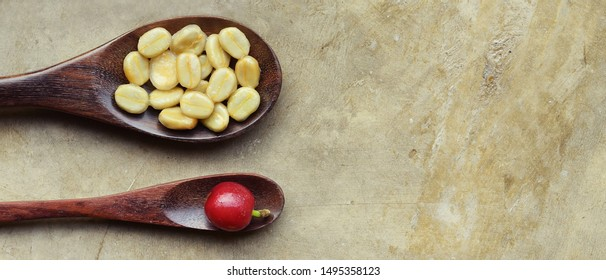 fresh coffee bean on wooden spoon