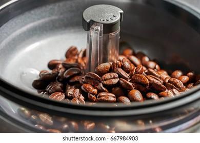 fresh coffee beans in coffee Machine grinders