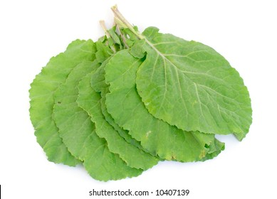 Fresh Collard Greens leaves on white background .