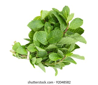 Fresh common herb mint bundle isolated on white