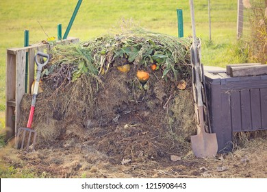 Fresh compost pile, with green and brown yard and garden material.