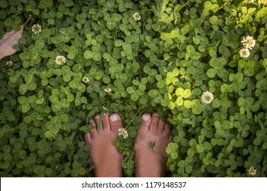 fresh contact wth the nature. naked woman feet standing on the green grass and enjoying the touch and the feeling with the world. healthy and natural lifestyle for free people have care of the world