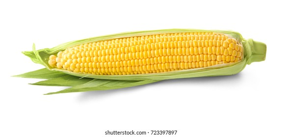 Fresh corn cob, isolated on white