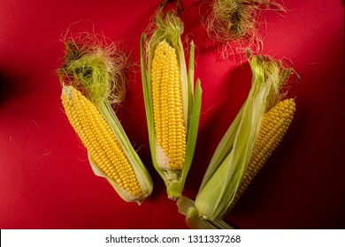 Fresh corn cobs above