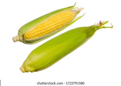Fresh corn isolated on white background.