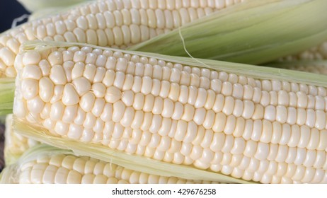 Fresh corn on the cob close up