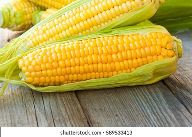 Fresh corn on the cob on a rustic wooden table, close-up