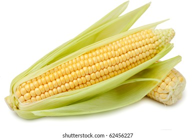 Fresh corn on the cob on a white background isolated. /  Corn on the cob