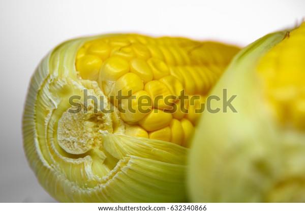 fresh corn  on white background isolate   close up
