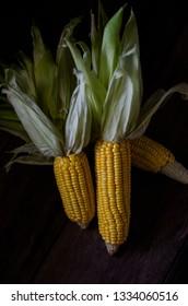 fresh corn still life style grap great organic food