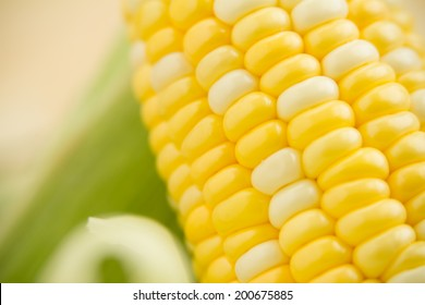 Fresh Corn - This is a shot of fresh corn on the cob. Shot with a shallow depth of field.