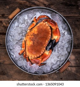 Fresh Cornish Crab on Ice in a pan over a rustic wooden background