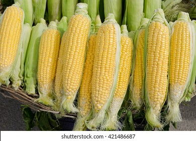 Fresh Corns in Bazaar