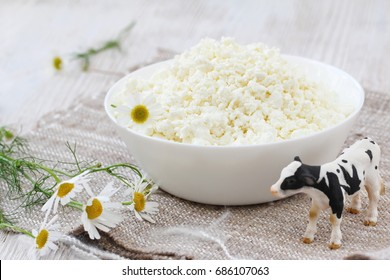 Fresh cottage cheese in a bowl in rustic style